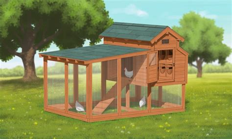 chicken house plans for 12 chickens
