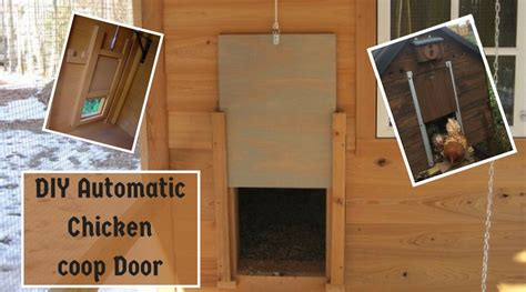 Chicken Coop Door Diy