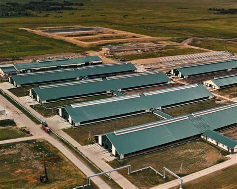 Chicken Houses Design Jobs