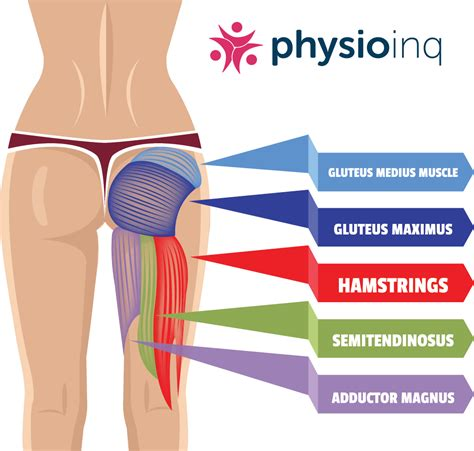 chronic tight hamstrings treatment type