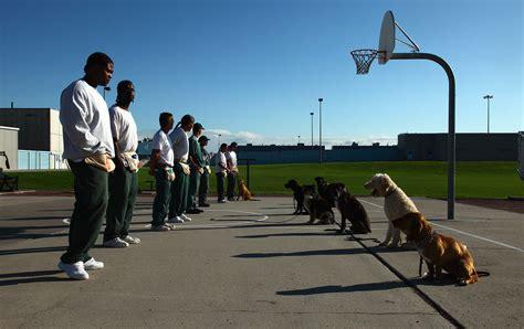 Colorado Prison Dogs Training