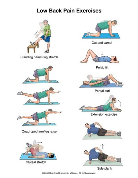 core exercises for lower back pain pdf