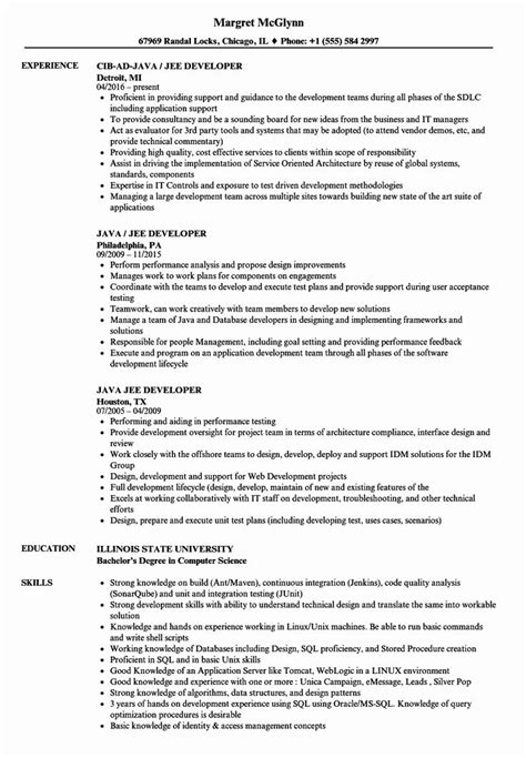 cv sample java developer core java developer resume sample developer resumes