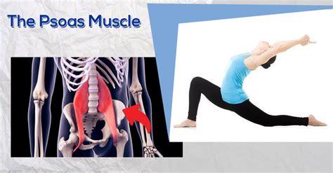 deep hip flexor muscles iliopsoas test positive