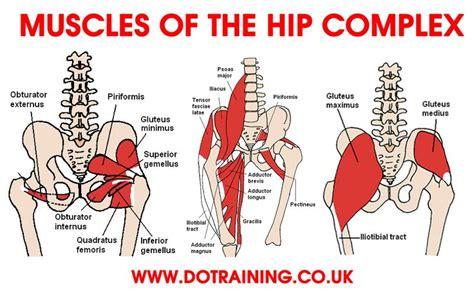 deep hip flexor muscles pain
