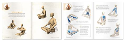 deep muscles of the hip canine companions oceanside