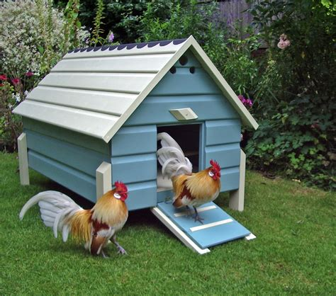 Design Of Chicken Houses