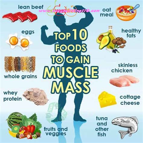 diet for building muscle mass