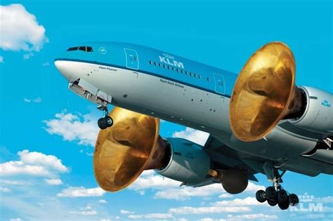 Do Planes Have Horns