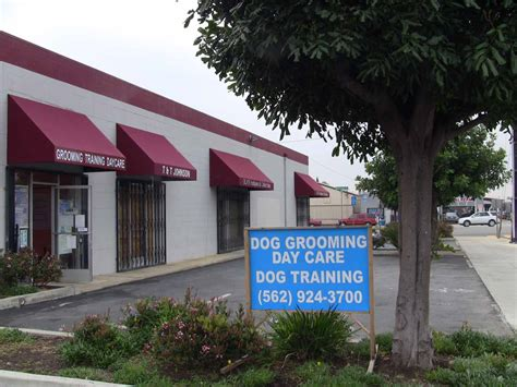 dog training cypress ca