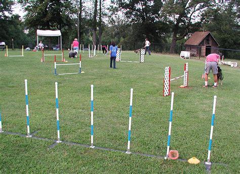 Dog Agility Training Georgia
