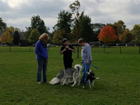 Dog Obedience Training Kenosha Wi