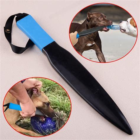 Dog Training Breaks