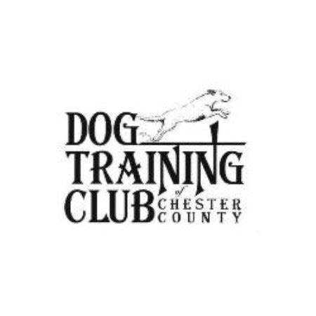 Dog Training Club Of Chester County Exton Pa