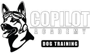 Dog Training Costs Killeen Texas