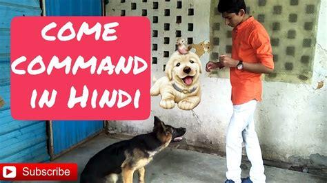 Dog Training Hindi Language