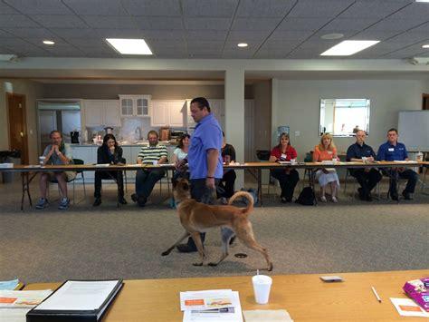 Dog Training Hudsonville Mi