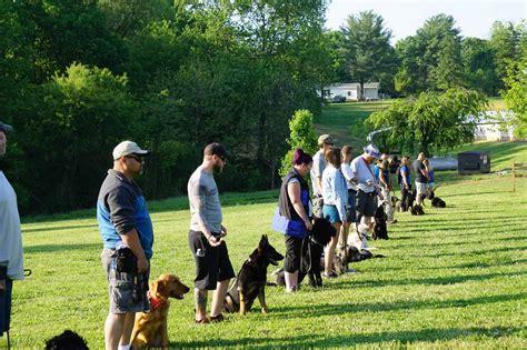 Dog Training Schools In Wv