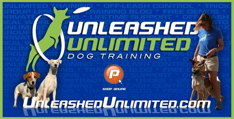 Dog Training Unlimited