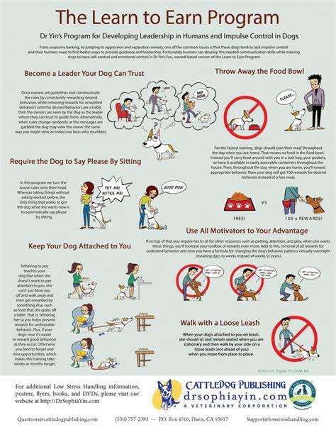 Dr Sophia Yin Dog Training