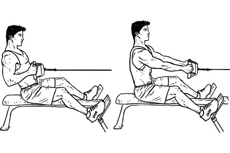 eccentric hip flexor strengthening seated cable row with rope