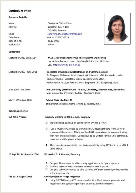 Curriculum vitae example nederlands yelopaper Image collections