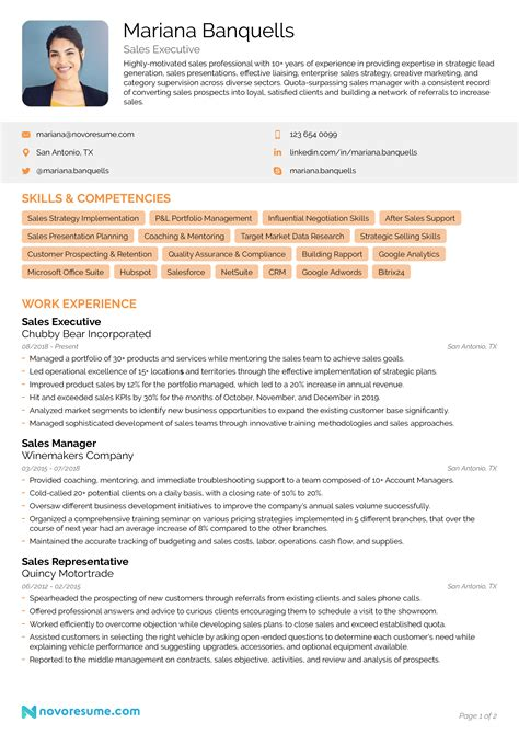 Example Sales Resume Objectives Resume Objectives 46 Free Sample Example Format