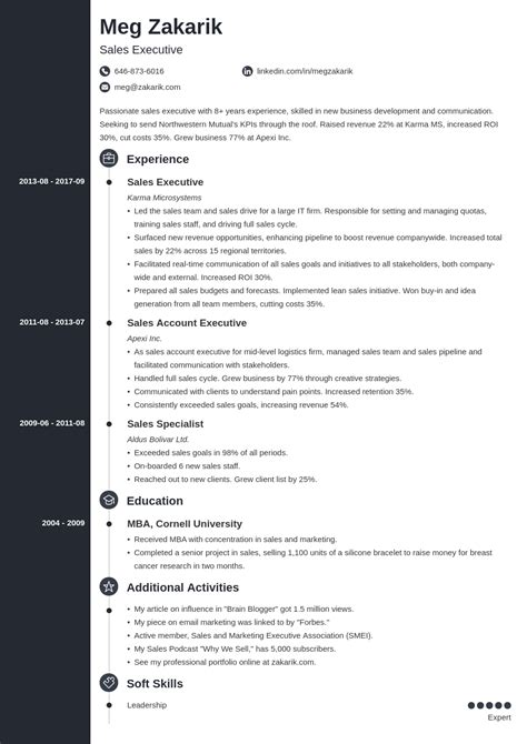Executive Level Resume Template Top Executive Resume Writing Samples Template Tools