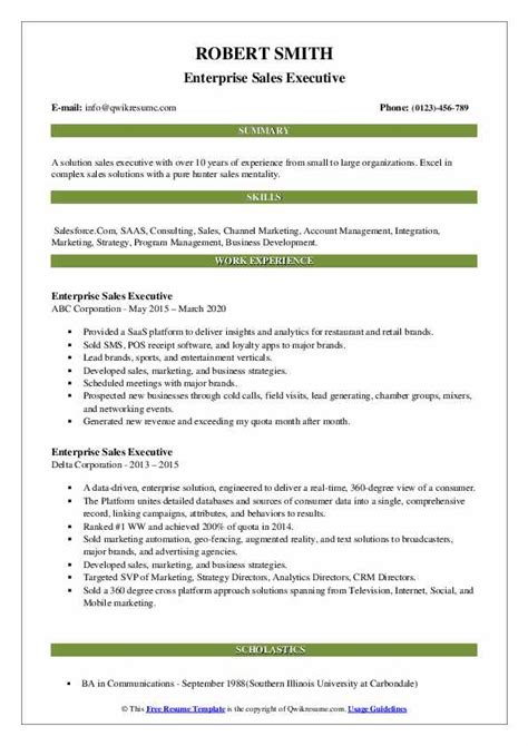 executive resume examples word 10 executive resume templates free samples examples