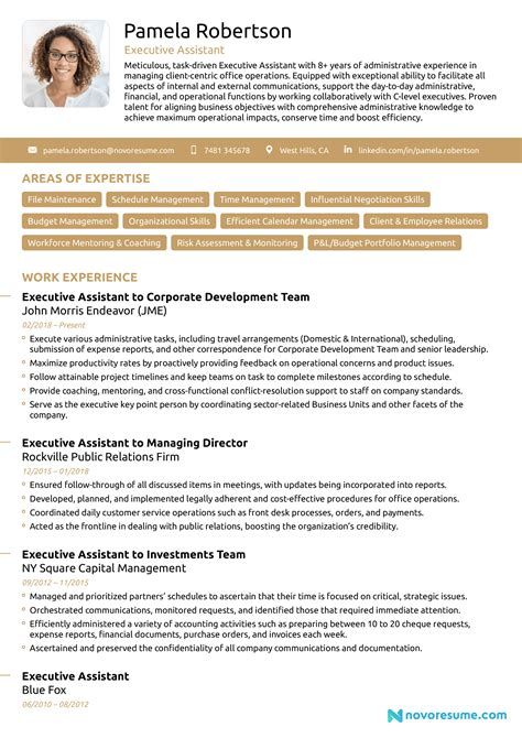 Executive Resume One Page Executive Resume Examples Resume Resource