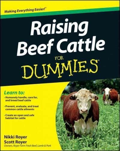 Executive Summary Resume research scientist phd executive summary Executive Summary On Resume Executive Summary Yourbusinesspal