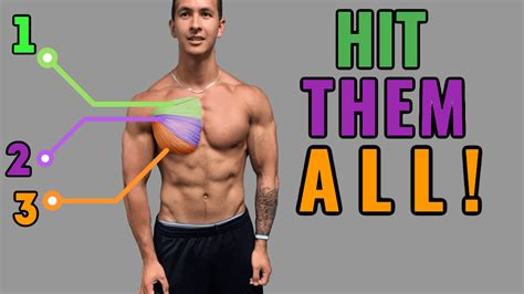 exercise for pec definition