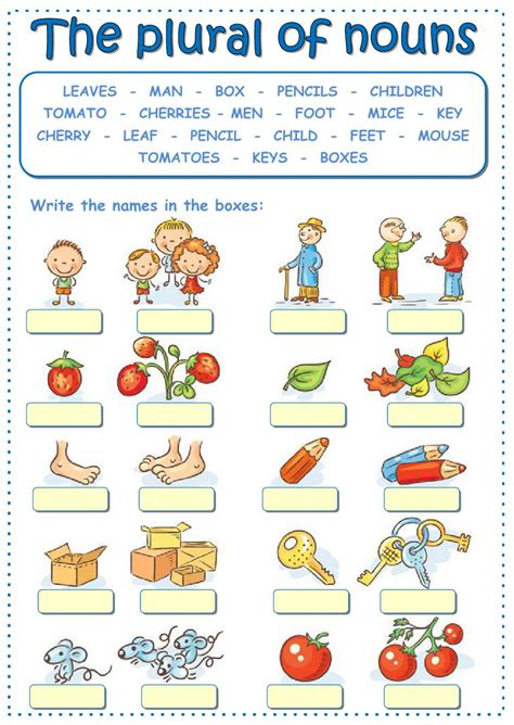 exercise plural of nouns