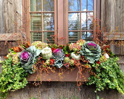 fall flowers for window boxes