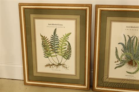 Framed Botanical Set  Ebay.