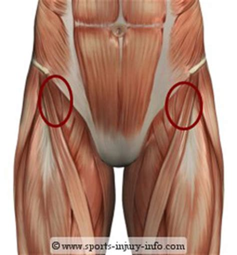 front hip flexor muscles injury and disorder lies