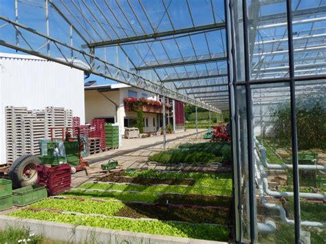 Gärtnerei Zu Verkaufen