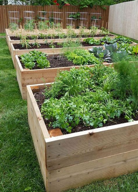 Garden Box Ideas