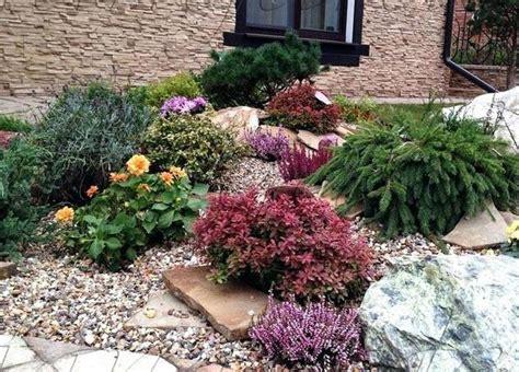 Garten Ostseite Pflanzen