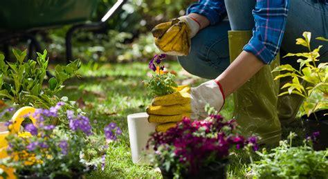 Gartenarbeit Tätigkeiten