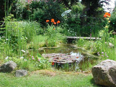 Gartenteich Wiki