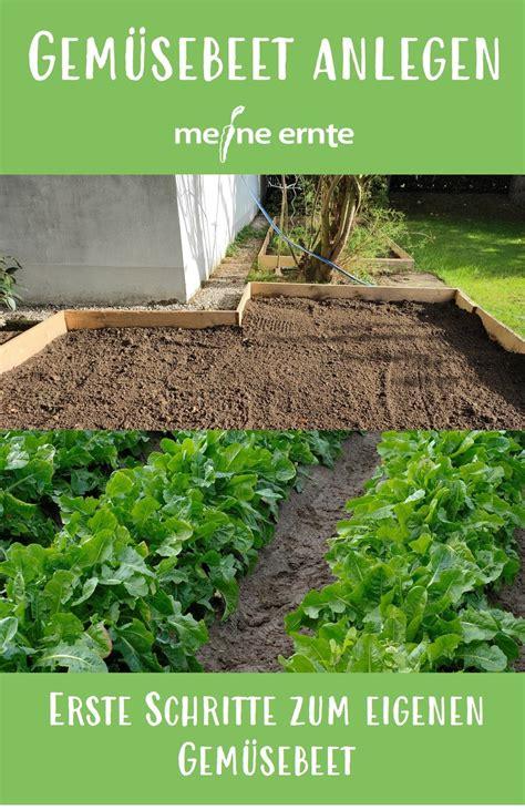 Gemüsebeet Anlegen Bodenvorbereitung