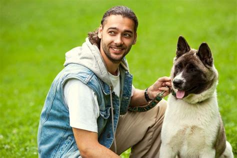 Get Paid To Train Service Dogs