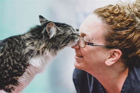 Halifax Credit Card Who Owns How Safe Are Your Savings Moneysupermarket