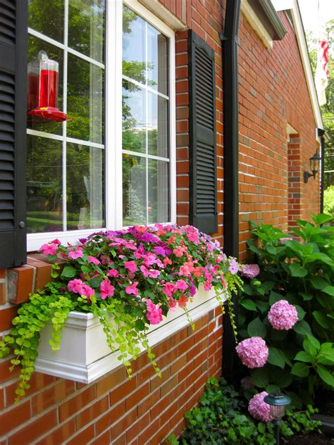 Hanging Window Planter