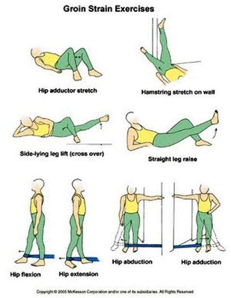 healing hip flexor tear protocol meaning tamil