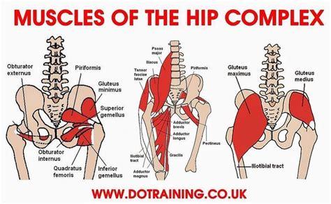 hip flexor back pain dancers studio knoxville