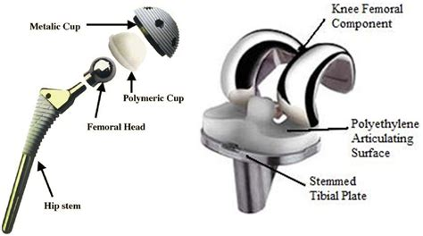 hip flexor complex imagery poems examples