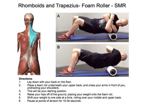 hip flexor foam roller stretches for rhomboids and traps