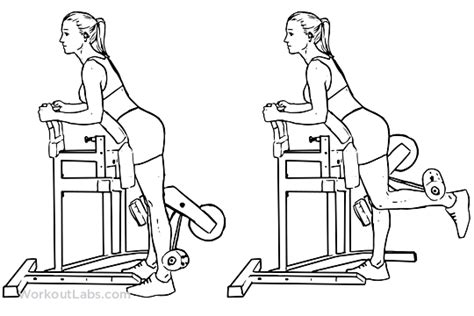 hip flexor machine standing leg curl exercise